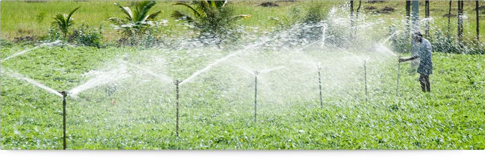 sprinkler irrigation sprinkler irrigation system sprinkler irrigation system design - Irrigation Systems
