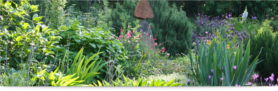 Herbal Garden - Herbal Garden in Delhi - Samadhiya Landscaping