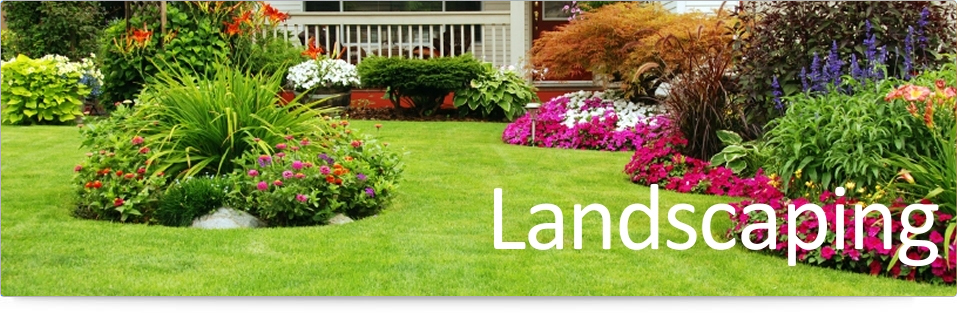 Landscaping Design Services in Delhi | Landscaping Services - Samadhiya Landscaping